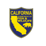 California Fish